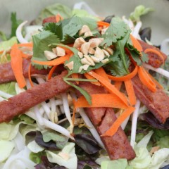 SPAM Satay Salad